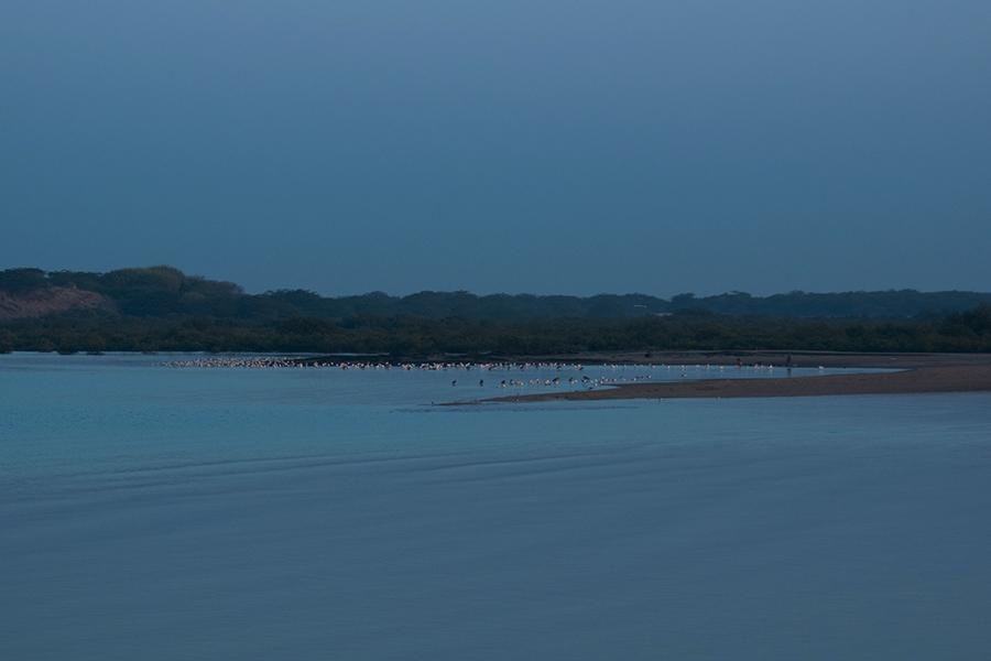 Balachadi-beach-1