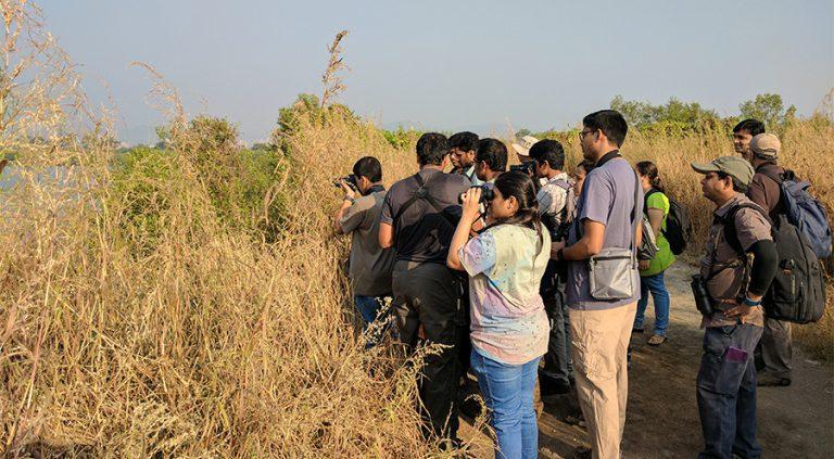 bps birding 2 1 768x423 - Mumbai Birdwatchers Club: Walk 1- Bhandup Pumping Station (and a quick detour): 30th October, 2016