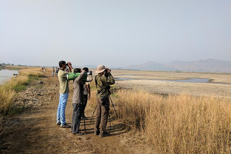 uran-birdwatching