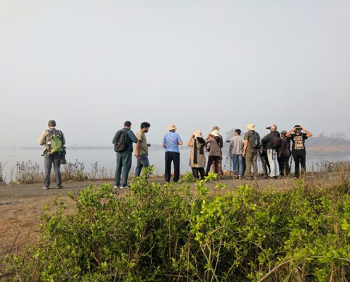 birders at uran cover 1 495x400 - Mount Abu- Encounter with Big Black Baloo