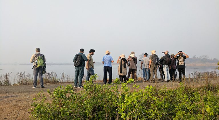 birders at uran cover 1 768x423 - Mumbai Birdwatchers' Club: Uran and the Quest for the Common Shelduck