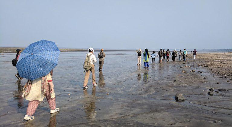 mumbai 768x423 - Mumbai Birdwatchers' Club: Birding by the beach- Bhuigaon, Vasai