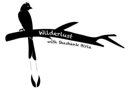 Wilderlust Expeditions
